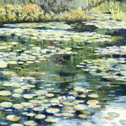 Waterlilies in Monet's garden at Giverny, oil on board, 18 x 22 inches, SOLD